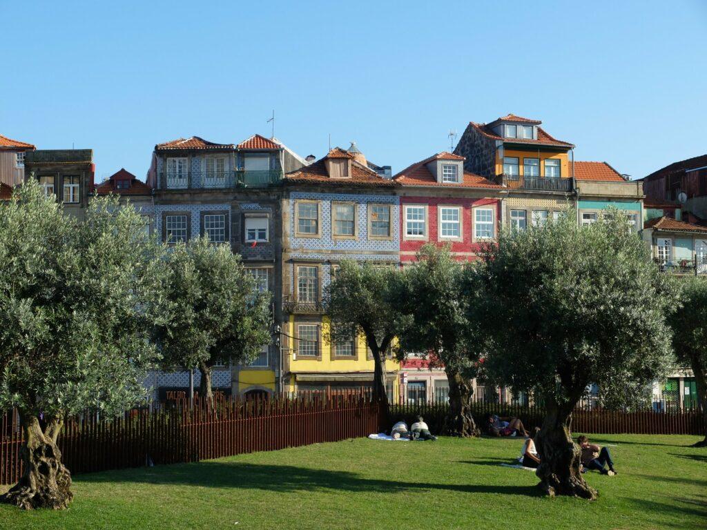 Bâtisses typiques depuis le 'Jardim das Oliveiras'