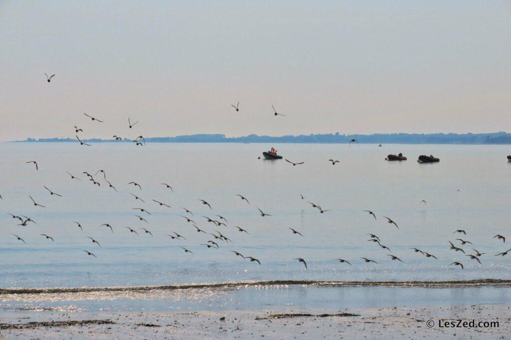 On admire la mer bretonne une dernière fois, avant de reprendre la route des terres